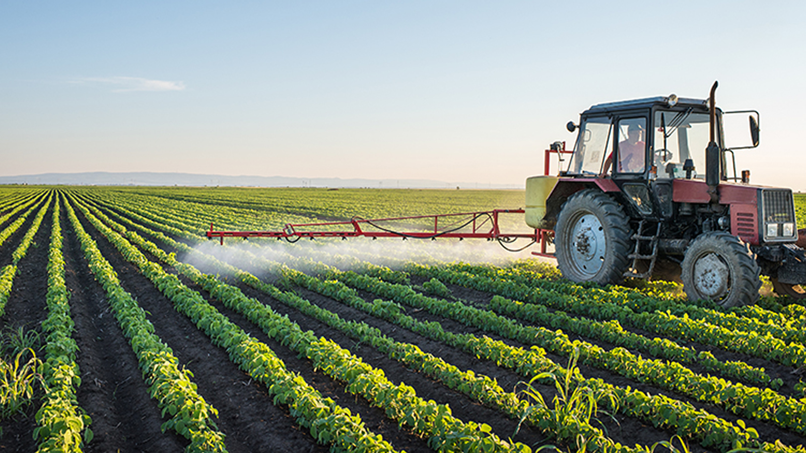 <h4>Chemicals In Farming</h4><p>American farms used nearly 900 million pounds of pesticides in the most recent year for which we have data.</p><em>iStockphoto.com</em>